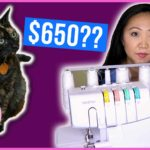 PSA: Keep Your Cat Away From Sewing Machines | Save $650 in Vet Bills!